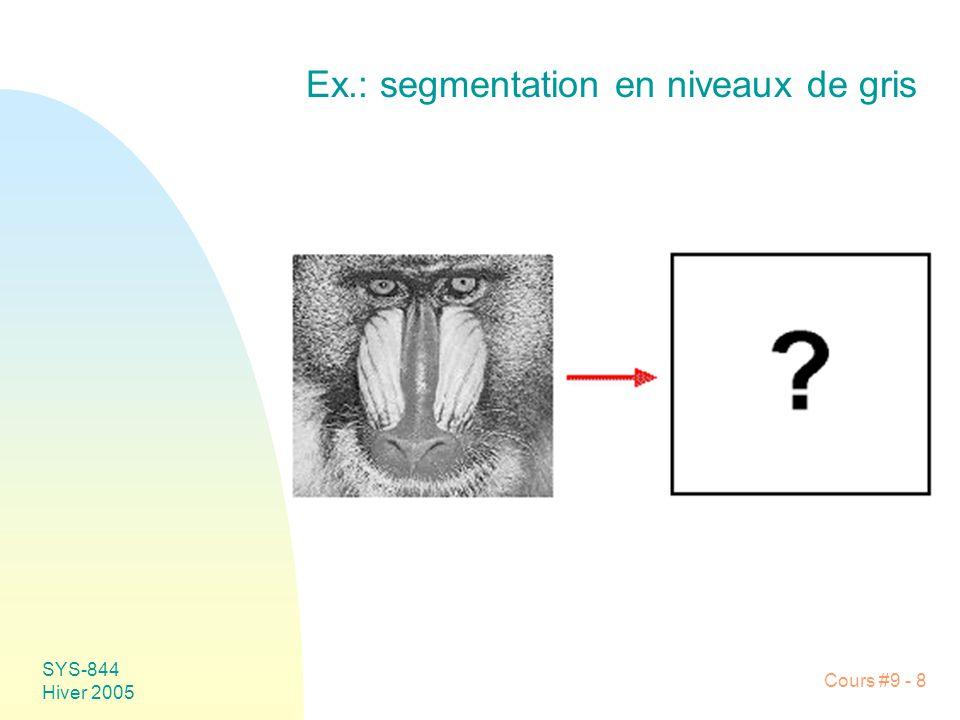 Ex.: segmentation en niveaux de gris