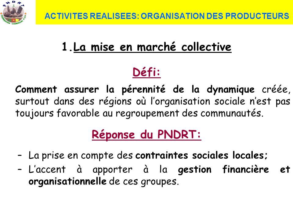 ACTIVITES REALISEES: ORGANISATION DES PRODUCTEURS