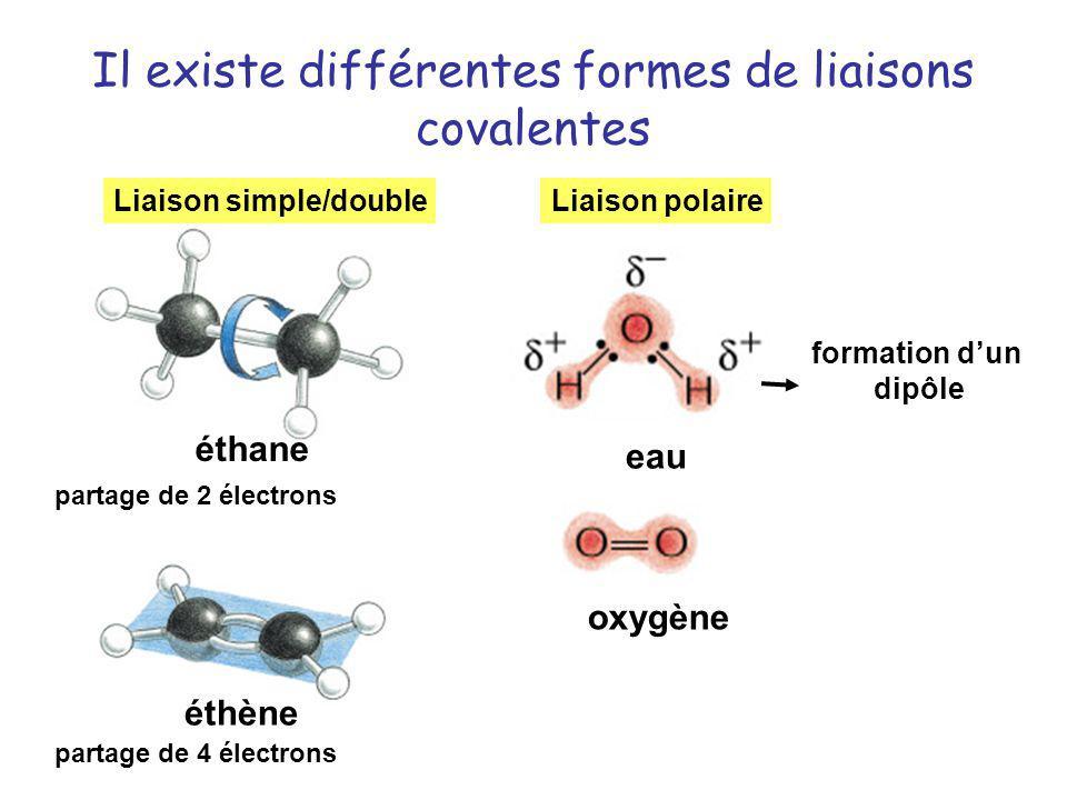 Il existe différentes formes de liaisons covalentes