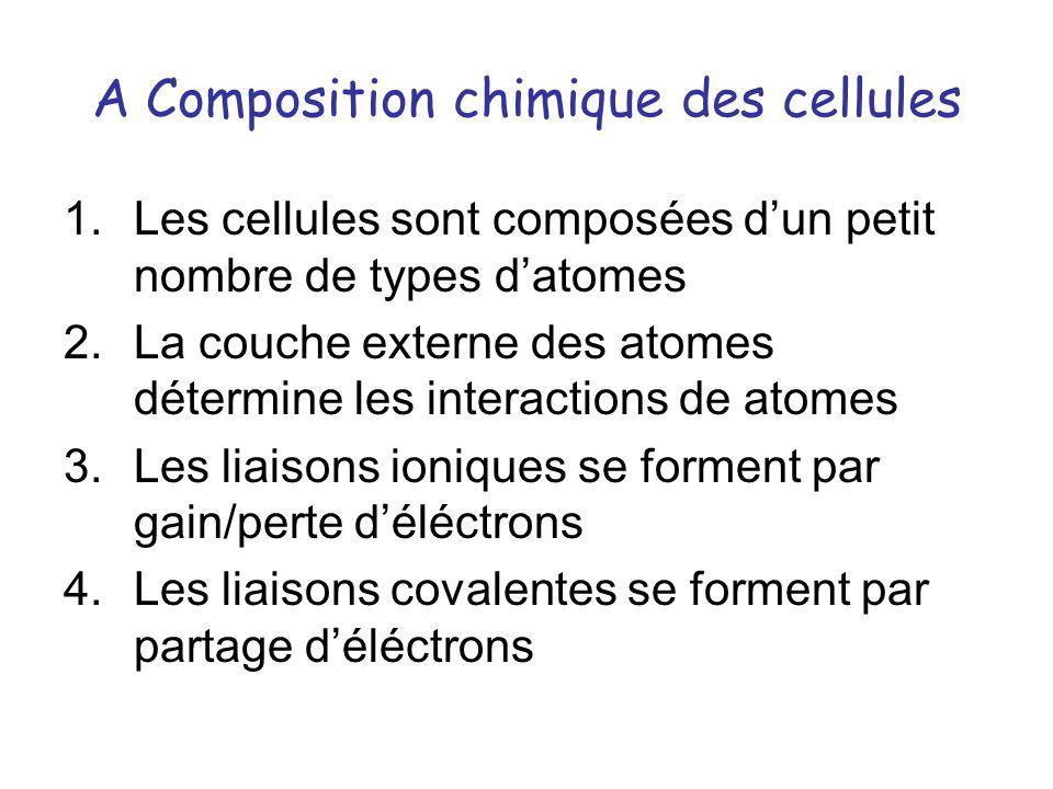 A Composition chimique des cellules