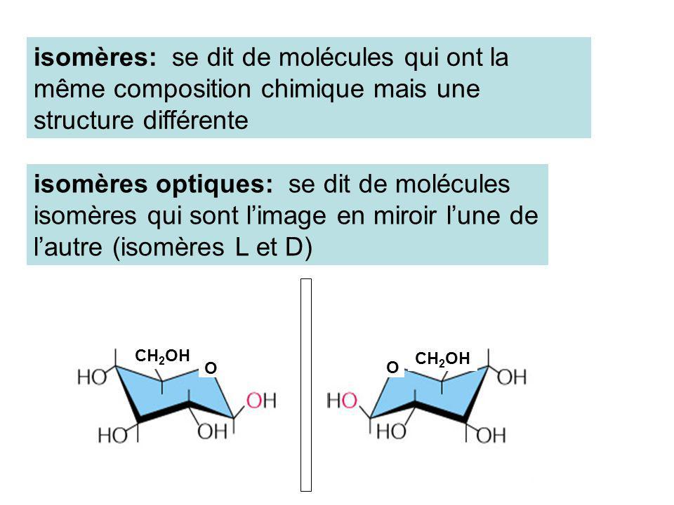 isomères: se dit de molécules qui ont la même composition chimique mais une structure différente