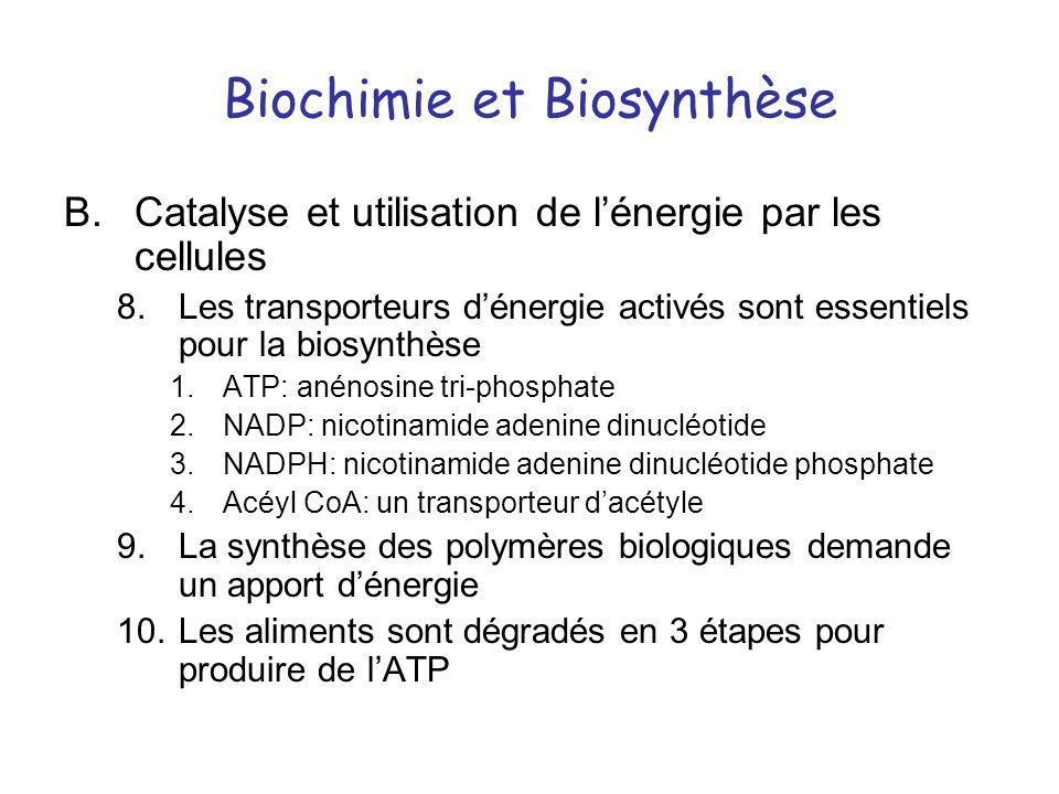 Biochimie et Biosynthèse