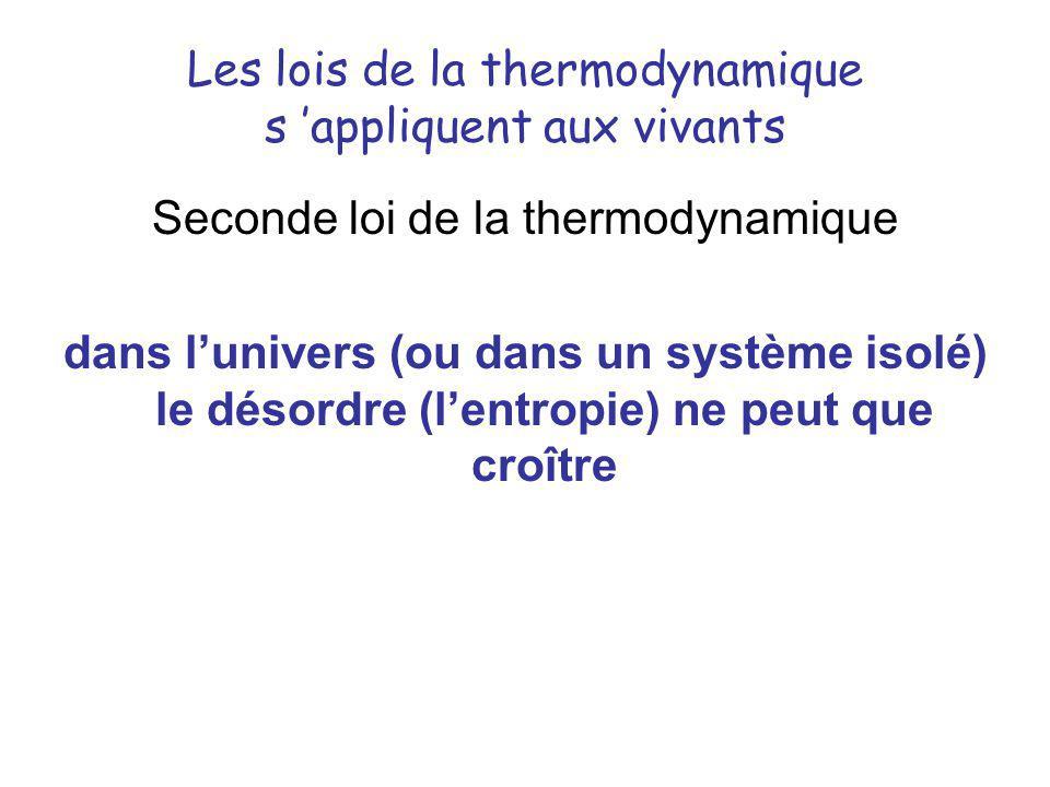 Les lois de la thermodynamique s 'appliquent aux vivants