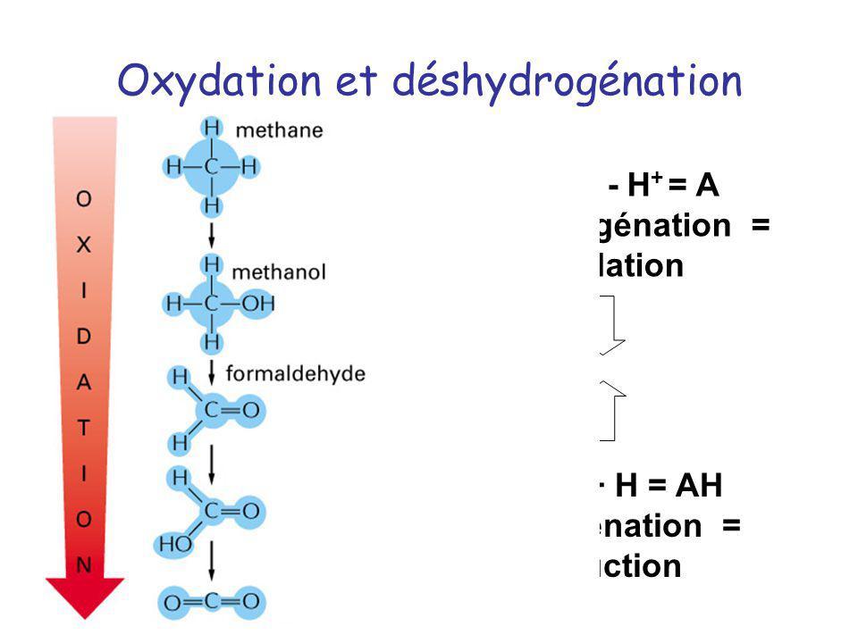 Oxydation et déshydrogénation
