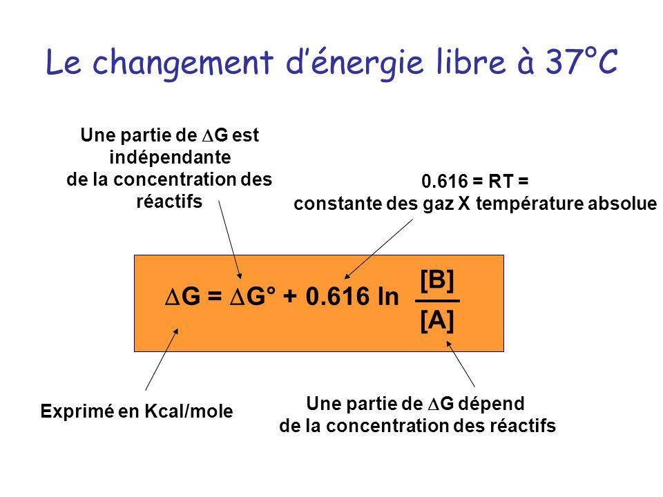 Le changement d'énergie libre à 37°C