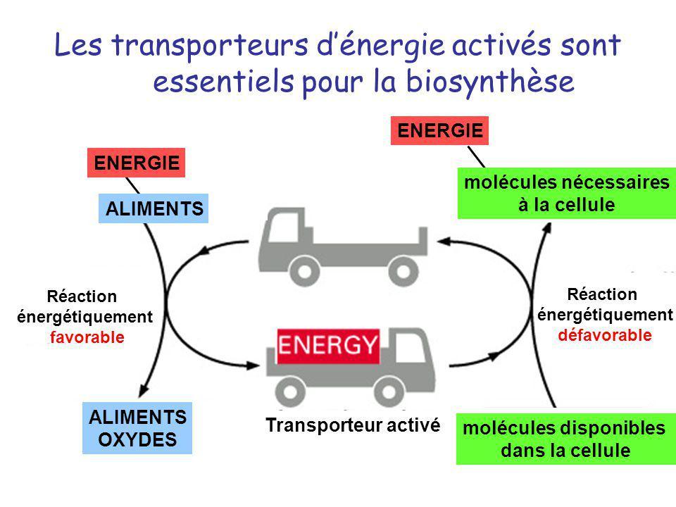 molécules nécessaires molécules disponibles