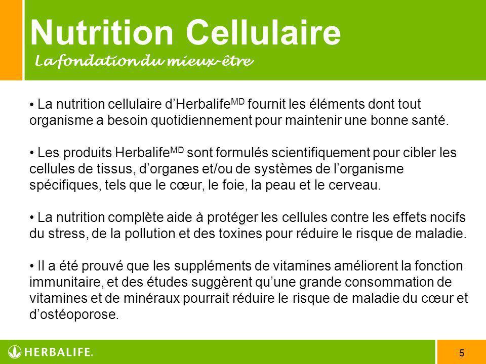 Nutrition Cellulaire La fondation du mieux-être