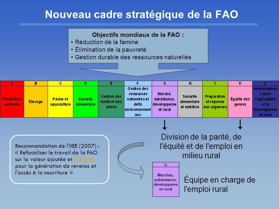 Nouveau cadre stratégique de la FAO