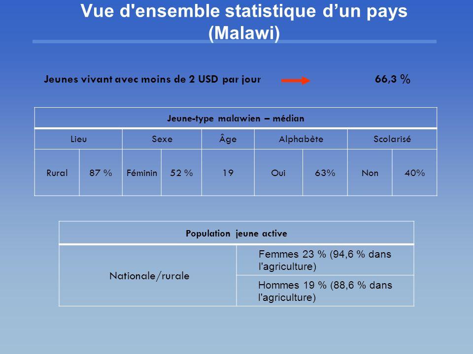 Vue d ensemble statistique d'un pays (Malawi)