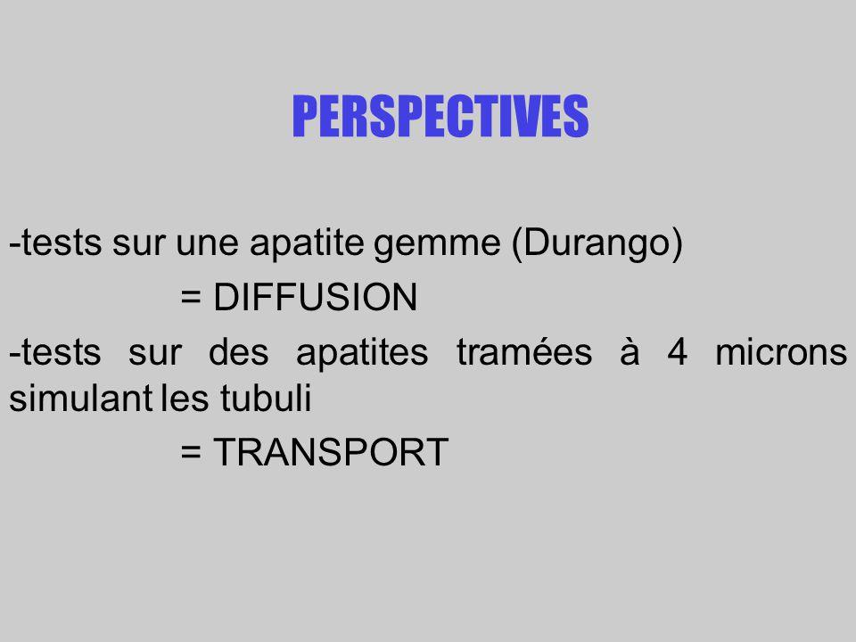 PERSPECTIVES -tests sur une apatite gemme (Durango) = DIFFUSION