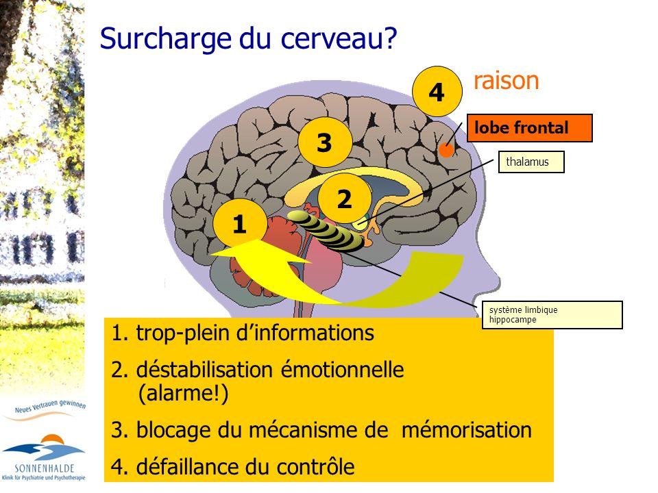 Surcharge du cerveau raison 4 3 2 1 1. trop-plein d'informations
