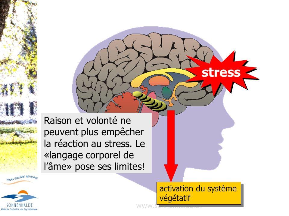 stress activation du système végétatif.