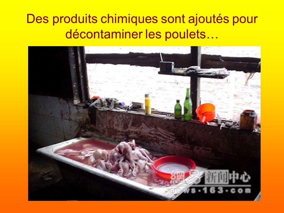 Des produits chimiques sont ajoutés pour décontaminer les poulets…