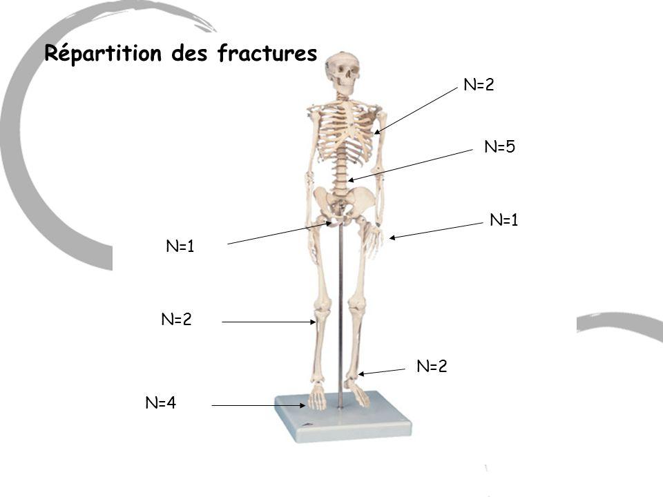Répartition des fractures