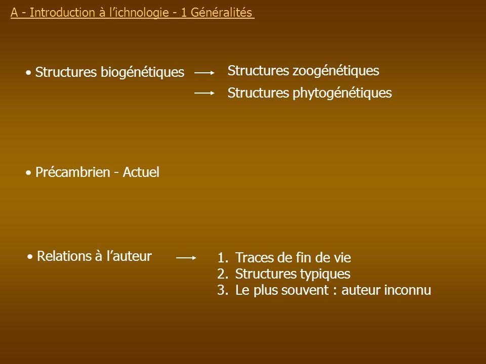 Structures zoogénétiques Structures phytogénétiques