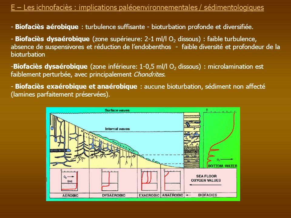 E – Les ichnofaciès : implications paléoenvironnementales / sédimentologiques