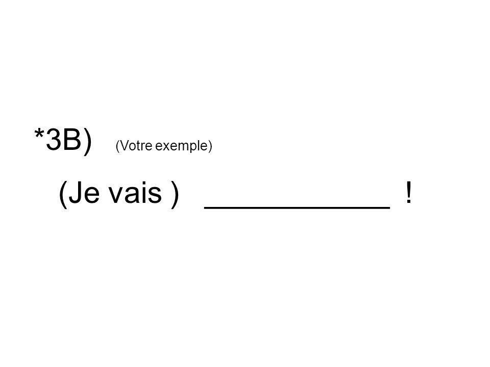 *3B) (Votre exemple) (Je vais ) ___________ !