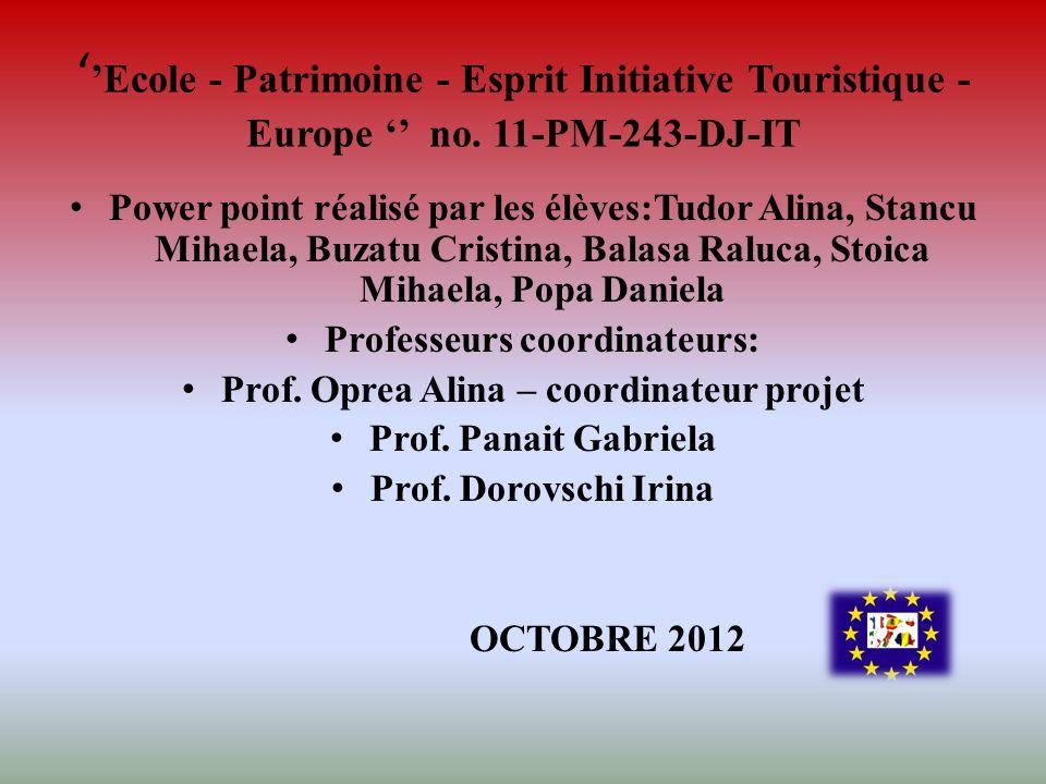 Professeurs coordinateurs: Prof. Oprea Alina – coordinateur projet