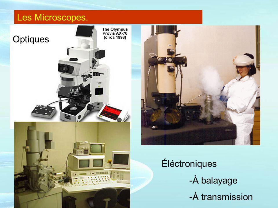 Les Microscopes. Optiques Éléctroniques -À balayage -À transmission