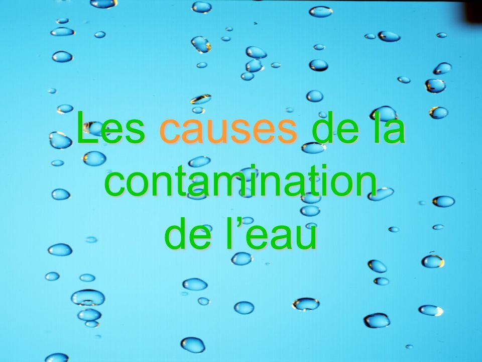 Les causes de la contamination de l'eau