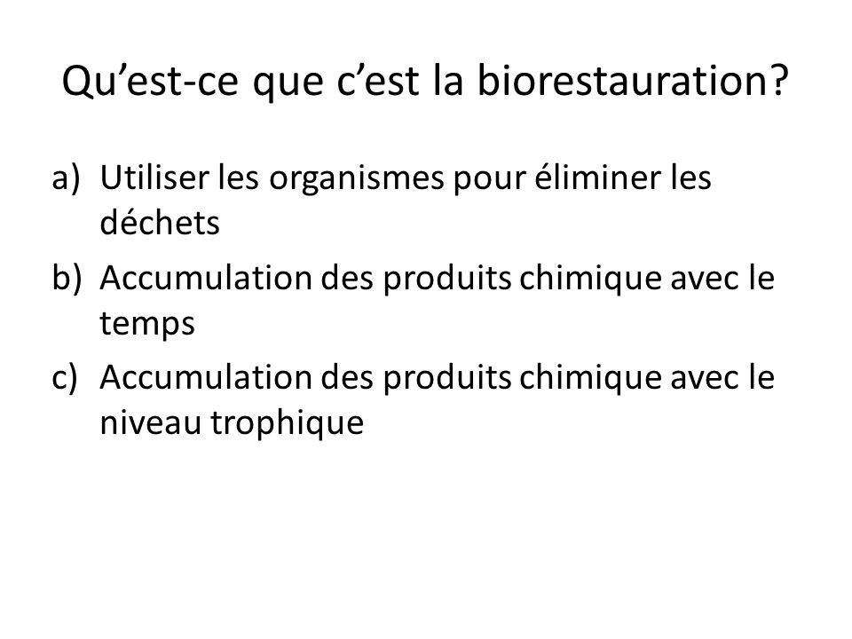 Qu'est-ce que c'est la biorestauration