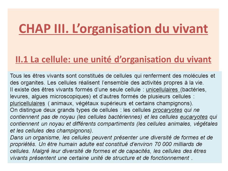 CHAP III. L'organisation du vivant II