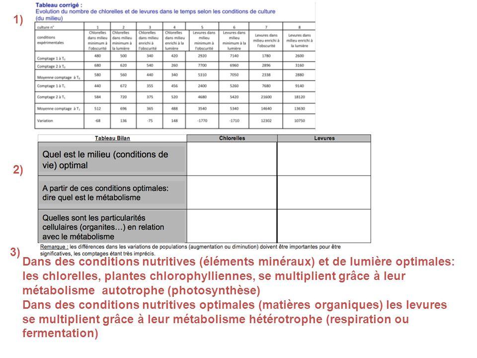 1) 2) 3) Dans des conditions nutritives (éléments minéraux) et de lumière optimales: