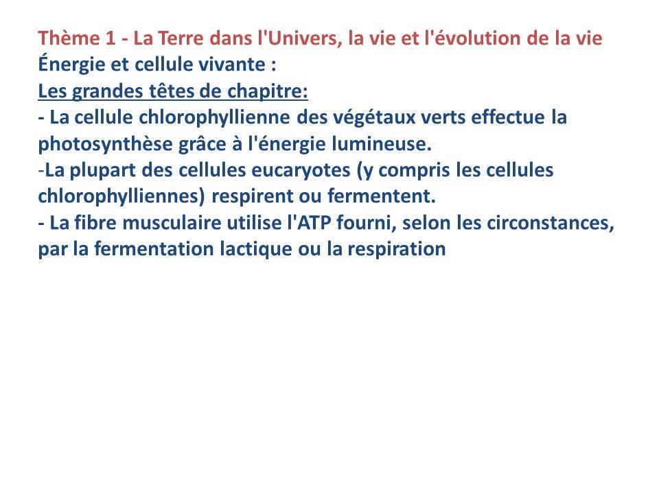 Thème 1 - La Terre dans l Univers, la vie et l évolution de la vie