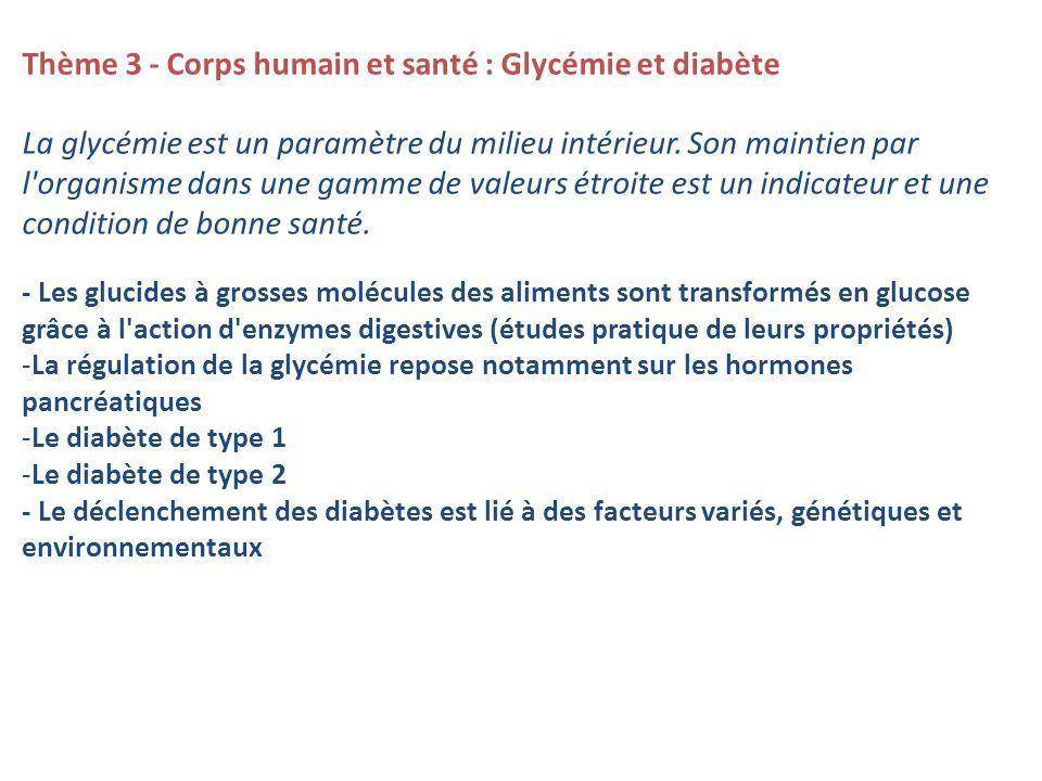 Thème 3 - Corps humain et santé : Glycémie et diabète