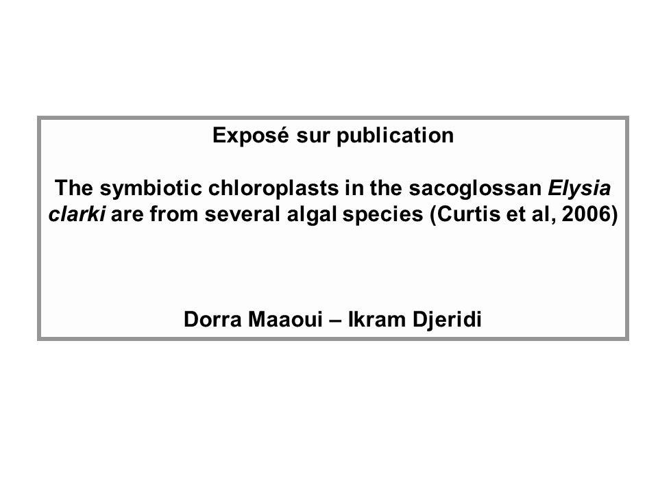 Exposé sur publication Dorra Maaoui – Ikram Djeridi