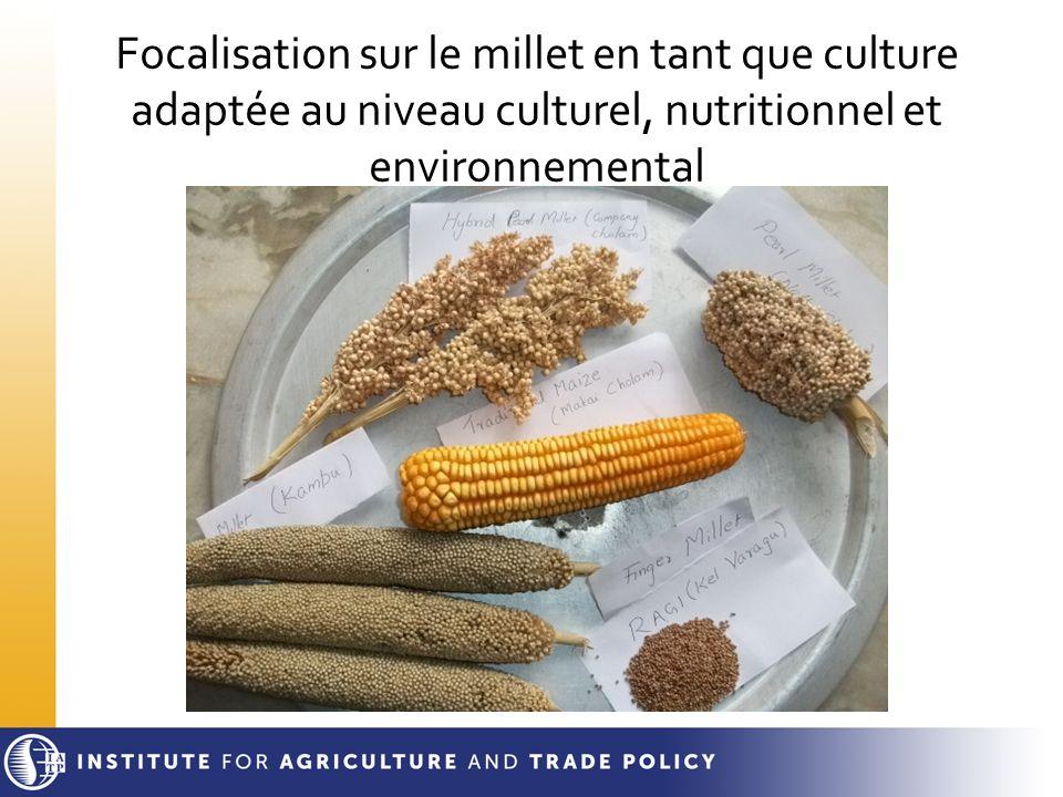 Focalisation sur le millet en tant que culture adaptée au niveau culturel, nutritionnel et environnemental