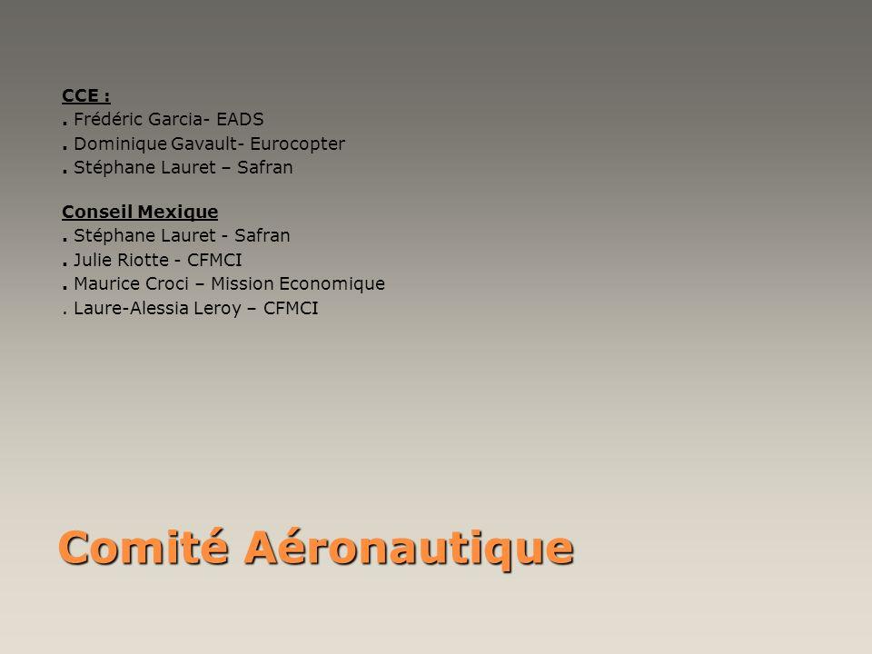 Comité Aéronautique CCE : . Frédéric Garcia- EADS