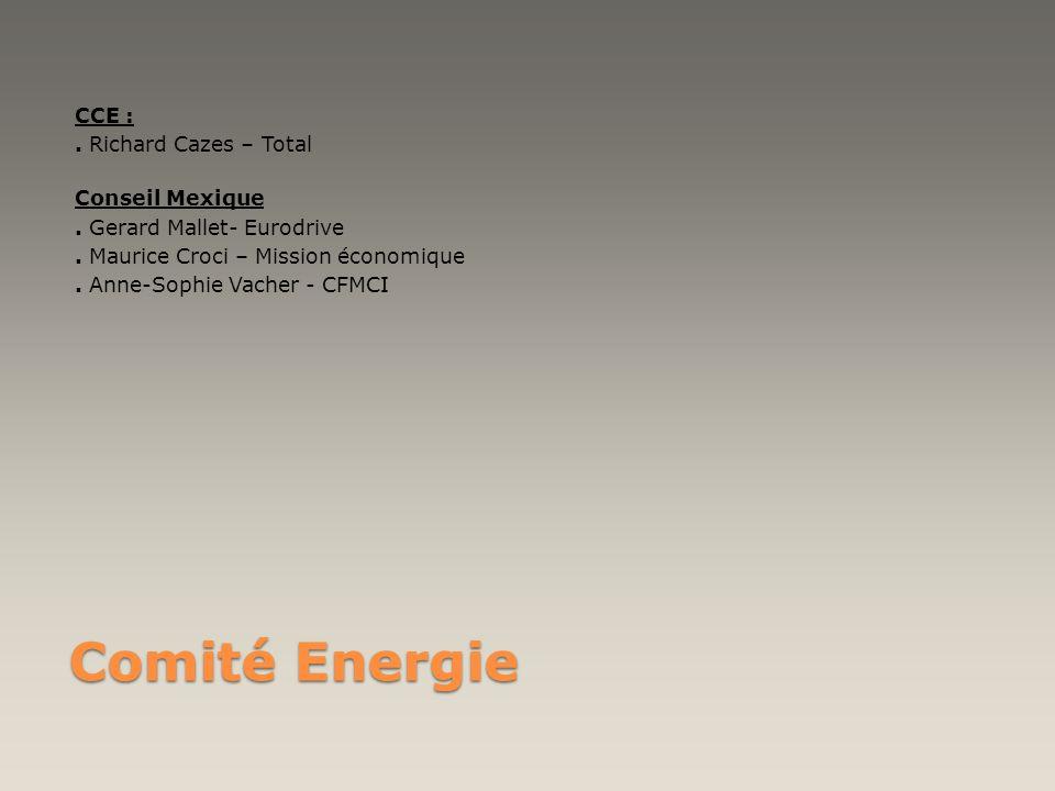 CCE :. Richard Cazes – Total Conseil Mexique. Gerard Mallet- Eurodrive