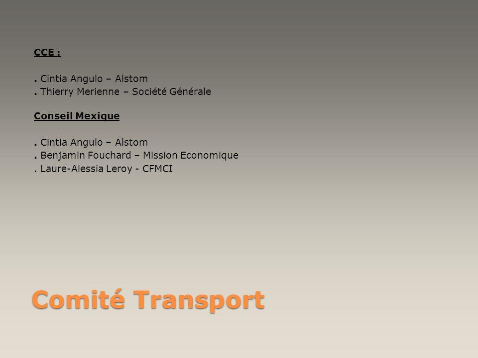 CCE :. Cintia Angulo – Alstom
