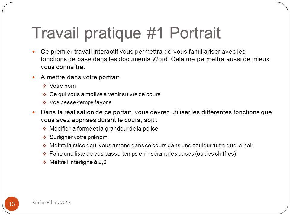 Travail pratique #1 Portrait