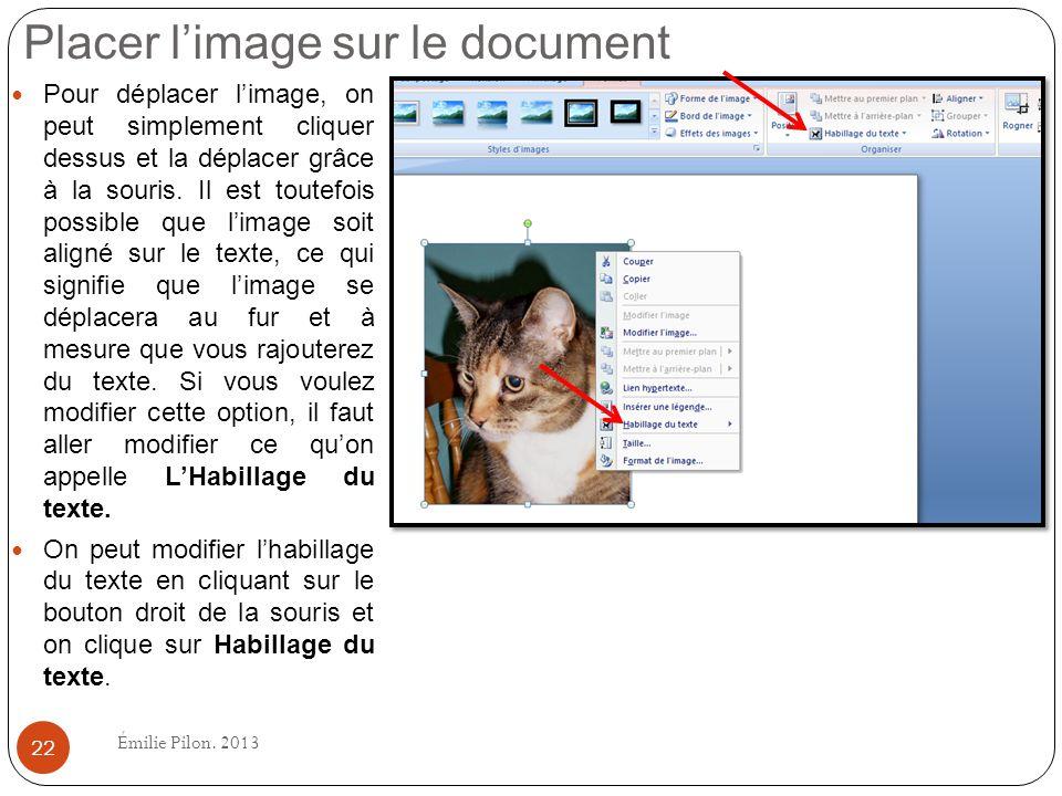 Placer l'image sur le document