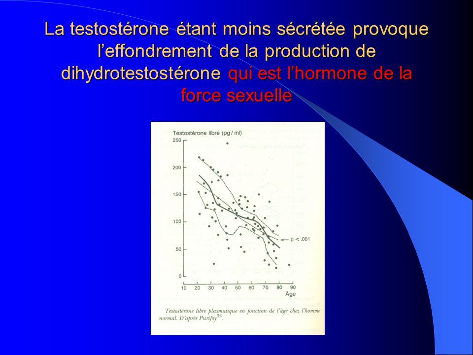 La testostérone étant moins sécrétée provoque l'effondrement de la production de dihydrotestostérone qui est l'hormone de la force sexuelle
