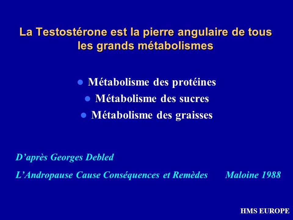 Métabolisme des protéines Métabolisme des sucres