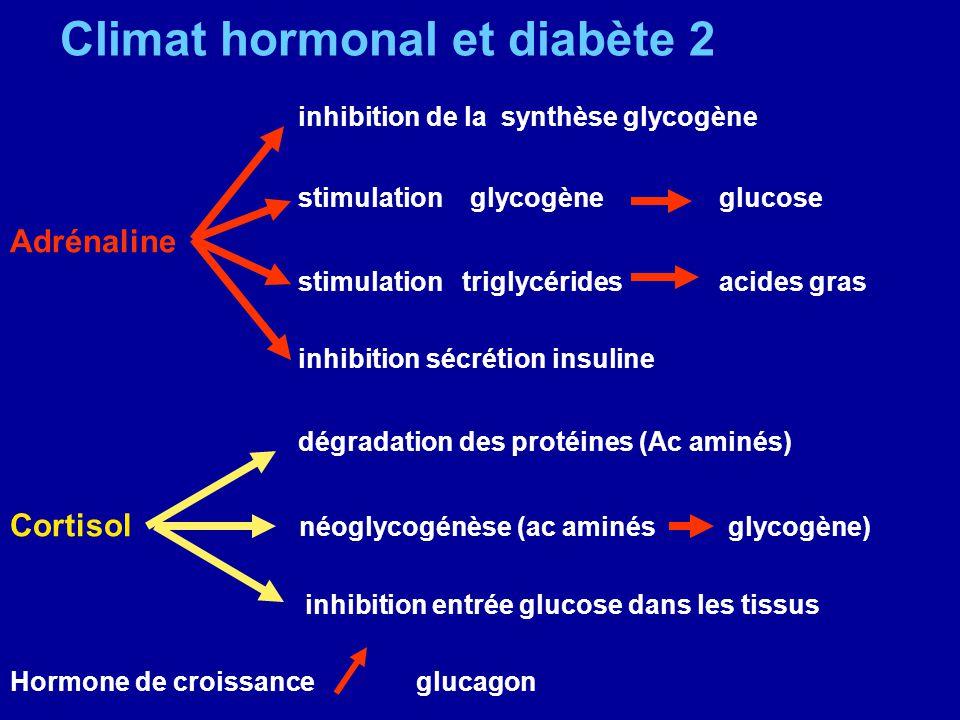 Climat hormonal et diabète 2
