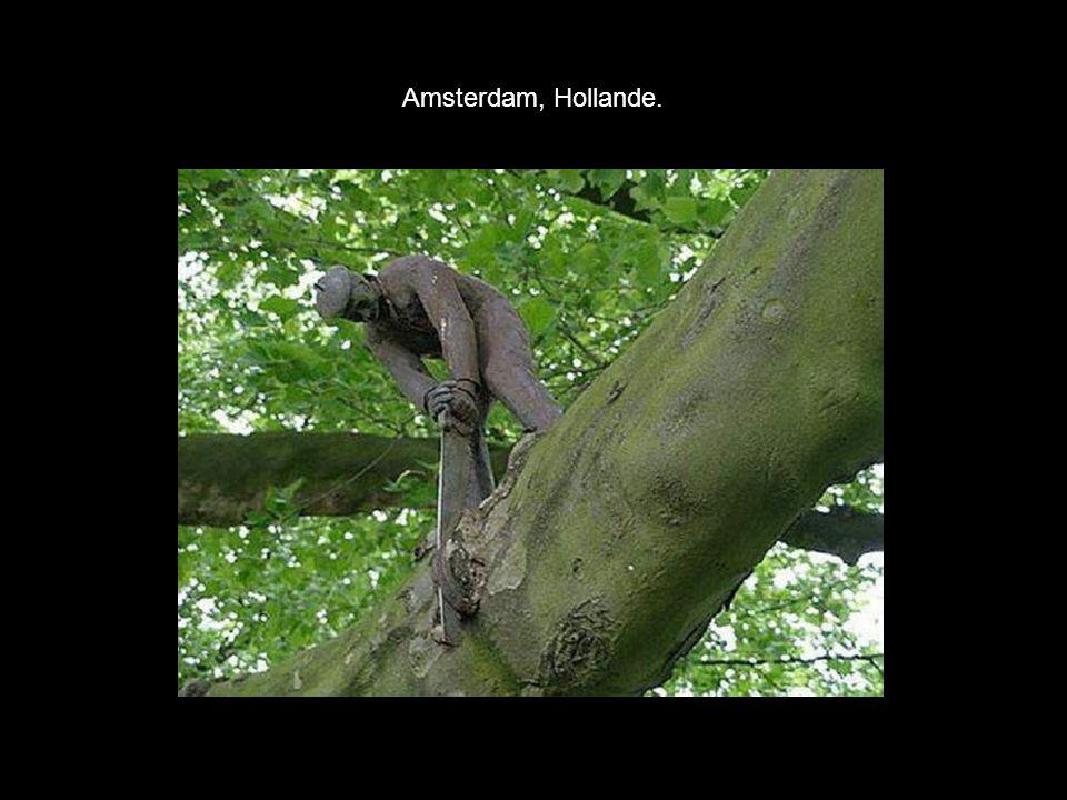 Amsterdam, Hollande.