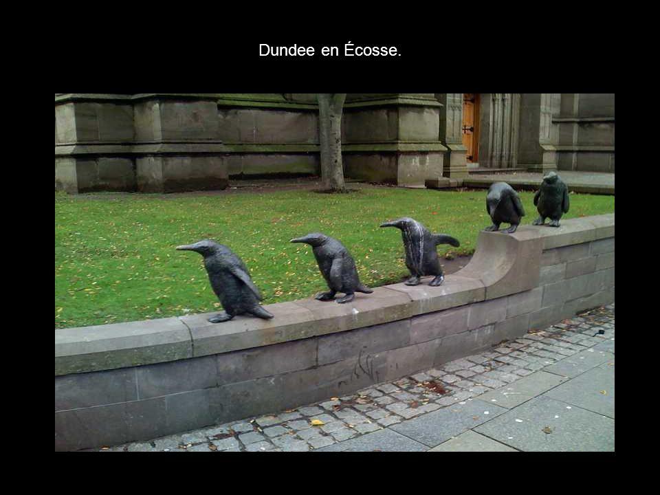 Dundee en Écosse.
