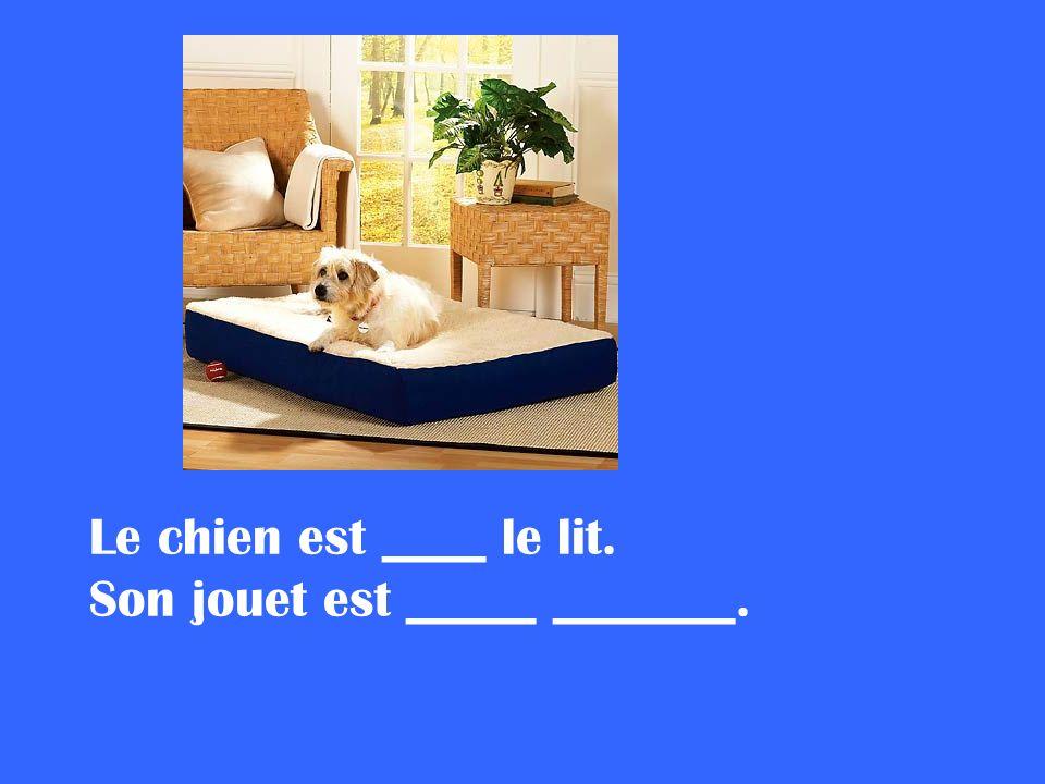 Le chien est ____ le lit. Son jouet est _____ _______.