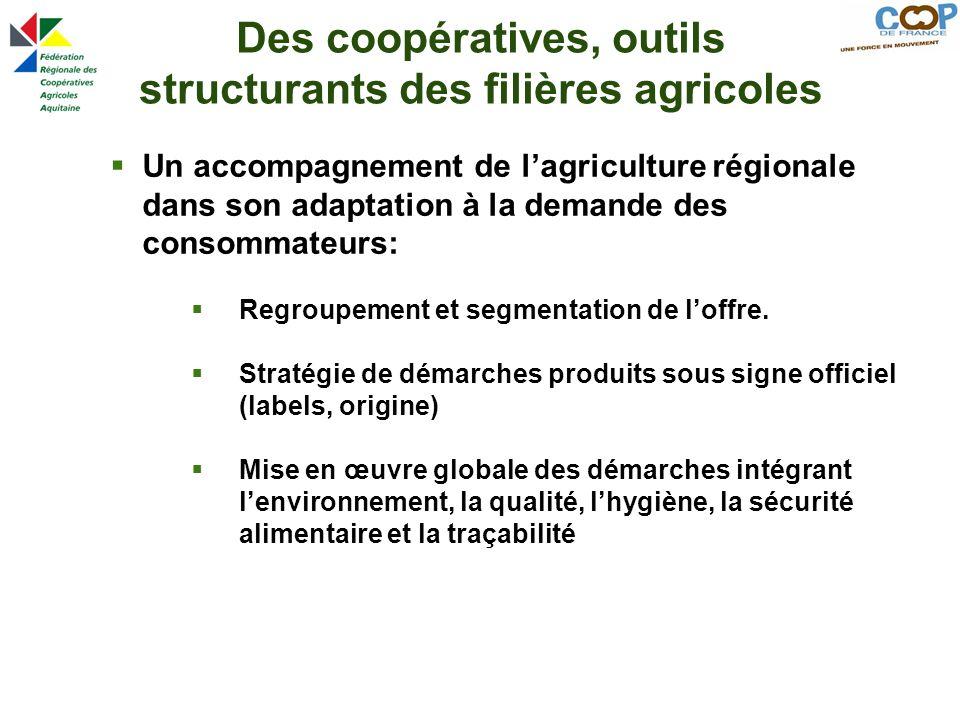 Des coopératives, outils structurants des filières agricoles