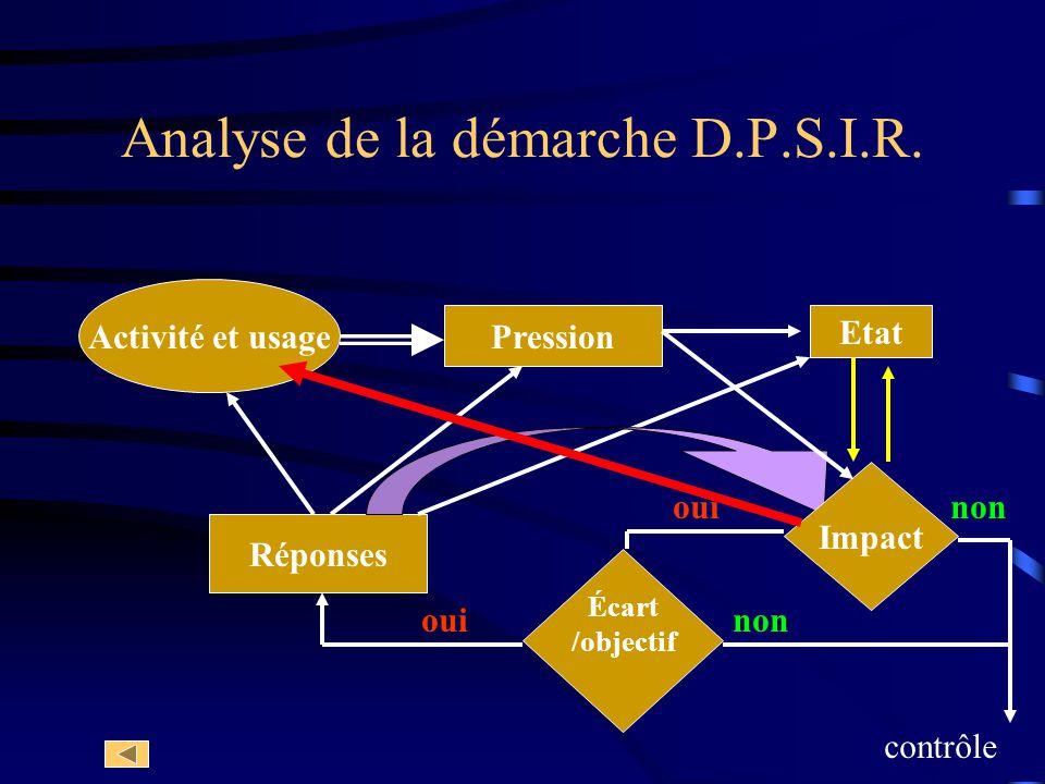 Analyse de la démarche D.P.S.I.R.