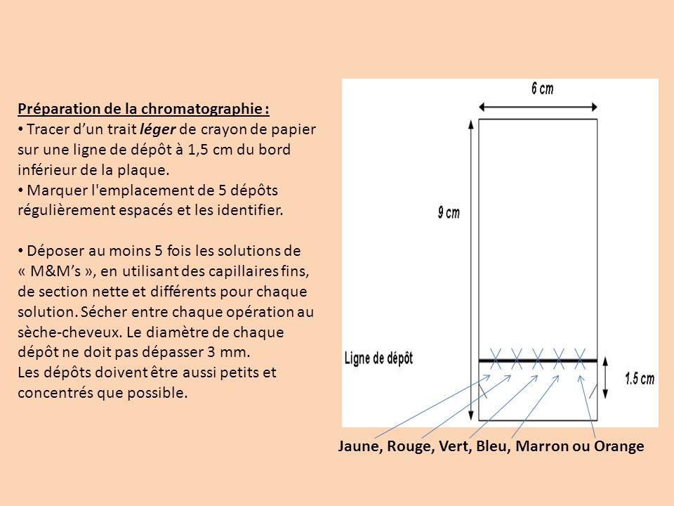 Préparation de la chromatographie :