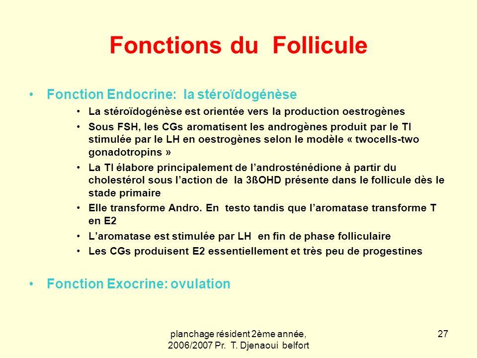 Fonctions du Follicule