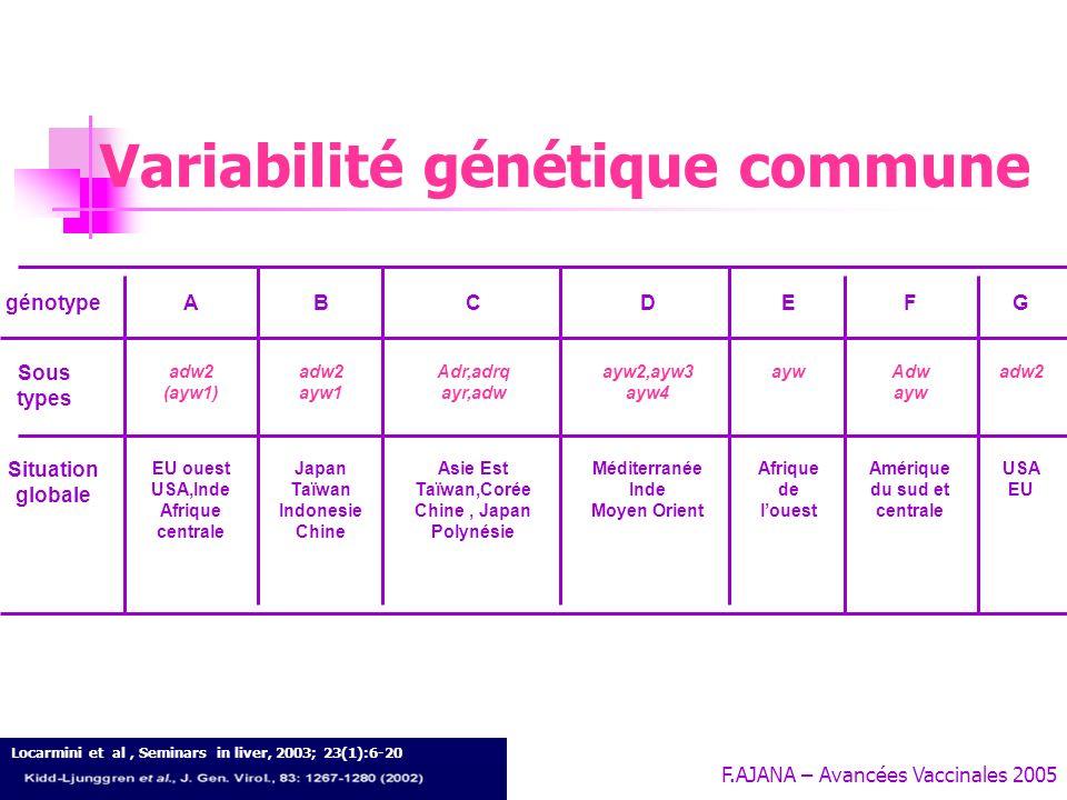 Variabilité génétique commune