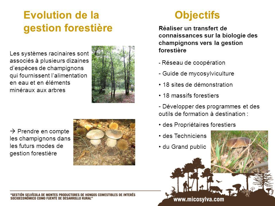 Evolution de la gestion forestière Objectifs