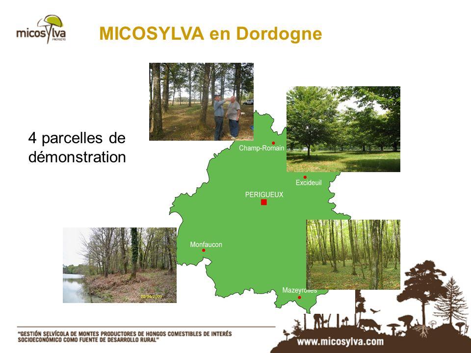 MICOSYLVA en Dordogne 4 parcelles de démonstration
