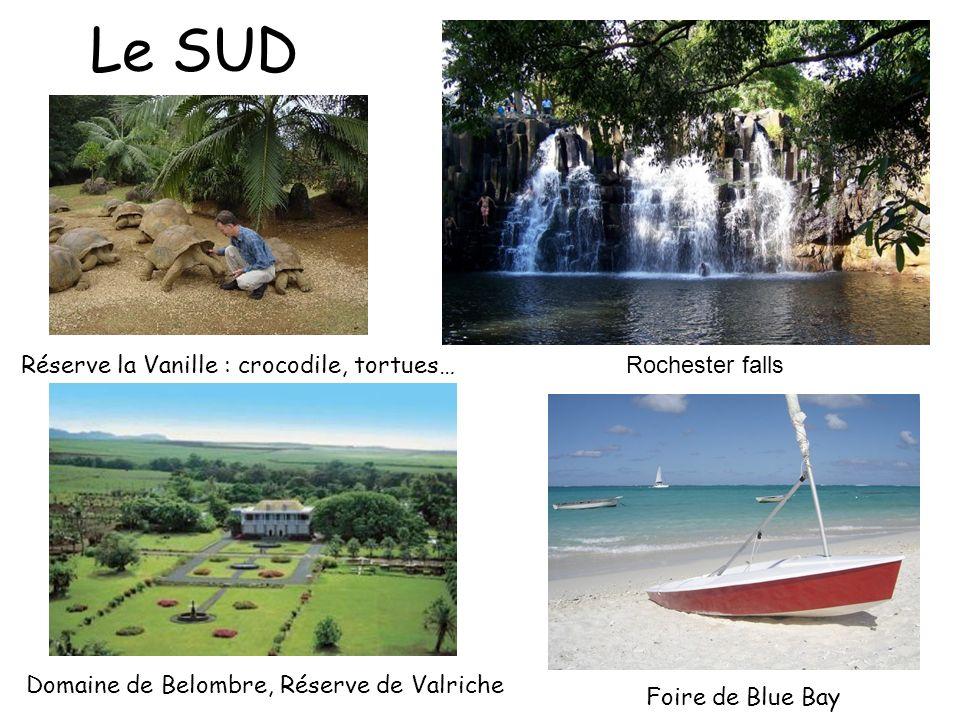 Le SUD Réserve la Vanille : crocodile, tortues… Rochester falls